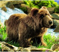 Бурый медведь, 43 см