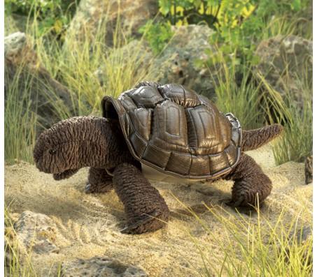 Галапагосская черепаха, 51 смЖивотные