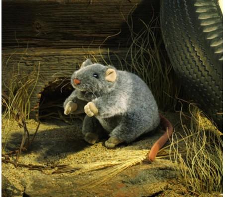 Крыса, 23 см FolkmanisЖивотные