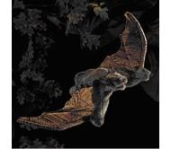 Летучая мышь, 61 см