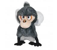 Monkey Angry Birds