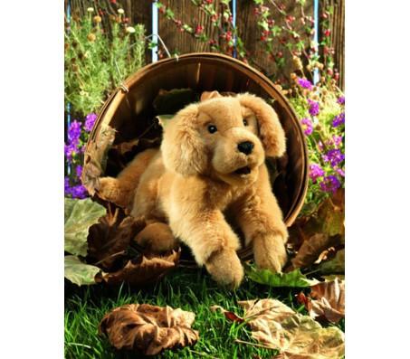 Золотой ретривер щенок, 43 см FolkmanisЖивотные